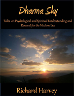 Front Cover of Dharma Sky e-book