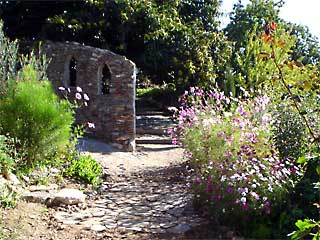 Garden Scene on a retreat in the Sierra Nevada